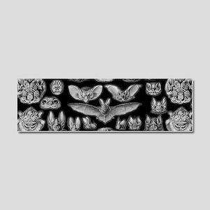 Vintage Bat Illustrations Car Magnet 10 x 3