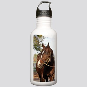A.P. INDY Stainless Water Bottle 1.0L