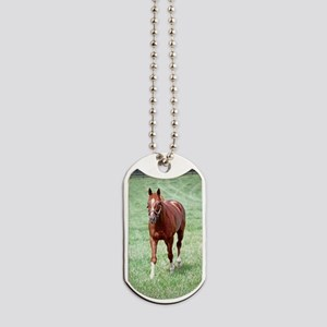CHARISMATIC Dog Tags