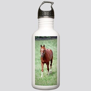 CHARISMATIC Stainless Water Bottle 1.0L