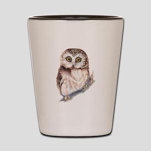 Cute Little Watercolor Saw Whet Owl Bird Nature Ar