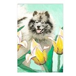 Keeshond in Tulips Postcards (Package of 8)