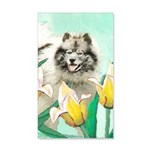 Keeshond in Tulips 20x12 Wall Decal
