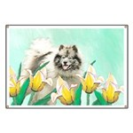 Keeshond in Tulips Banner