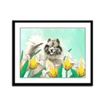 Keeshond in Tulips Framed Panel Print