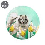 Keeshond in Tulips 3.5