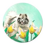 Keeshond in Tulips Round Car Magnet