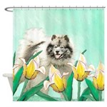 Keeshond in Tulips Shower Curtain