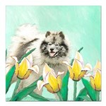Keeshond in Tulips Square Car Magnet 3