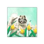 Keeshond in Tulips Square Sticker 3