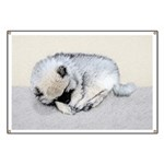 Keeshond Puppy (Sleeping) Banner
