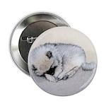Keeshond Puppy (Sleeping) 2.25
