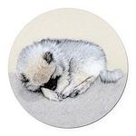 Keeshond Puppy (Sleeping) Round Car Magnet