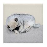 Keeshond Puppy (Sleeping) Tile Coaster