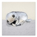 Keeshond Puppy (Sleeping Square Car Magnet 3