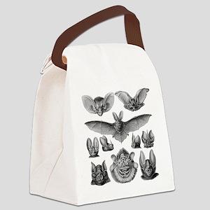 Vintage Bat Illustrations Canvas Lunch Bag
