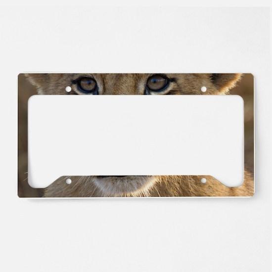 Sparta Lion Cub License Plate Holder