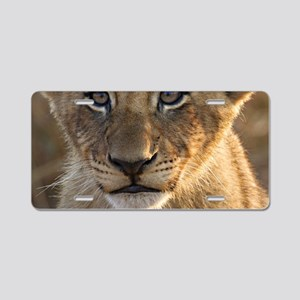 Sparta Lion Cub Aluminum License Plate