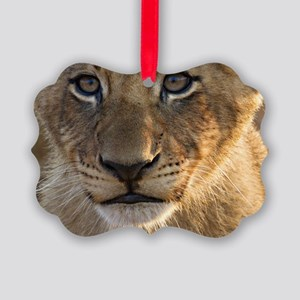 Sparta Lion Cub Picture Ornament