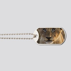 Sparta Lion Cub Dog Tags