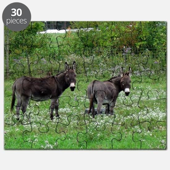 Two Miniature Donkeys Puzzle
