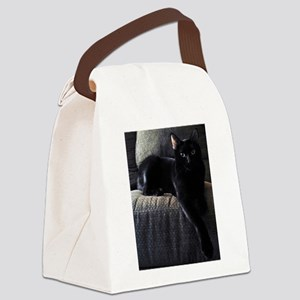 The Beautiful Benny Canvas Lunch Bag