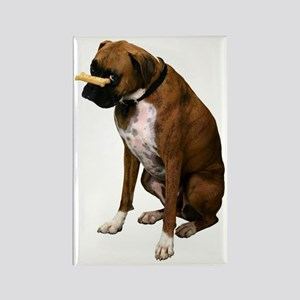 Brindle Boxer Photo Rectangle Magnet