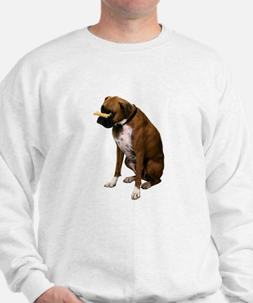 Brindle Boxer Photo Jumper