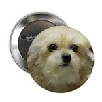 Ms Pogie Button