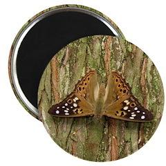 Hackberry Emperor Butterfly Magnet
