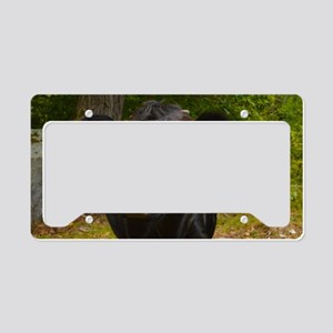 Vermont Moo License Plate Holder