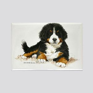 Bernese Mountain Dog Bright Eyes Rectangle Magnet