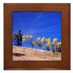 Aspens on Hill Framed Tile