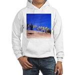 Aspens on Hill Hooded Sweatshirt