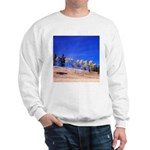 Aspens on Hill Sweatshirt