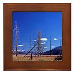 Yellowstone river flat Framed Tile