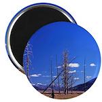 Yellowstone river flat Magnet