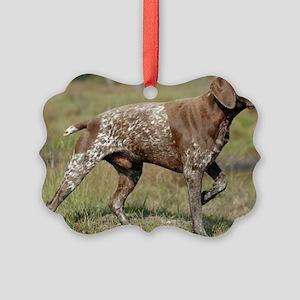 german shorthair pointer full Ornament