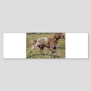 german shorthair pointer full Bumper Sticker