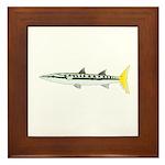 Yellowtail Barracuda Framed Tile