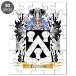 Feldbaum Puzzle