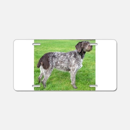 german wirehaired pointer liver full Aluminum Lice