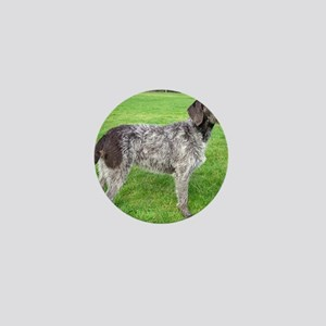 german wirehaired pointer liver full Mini Button
