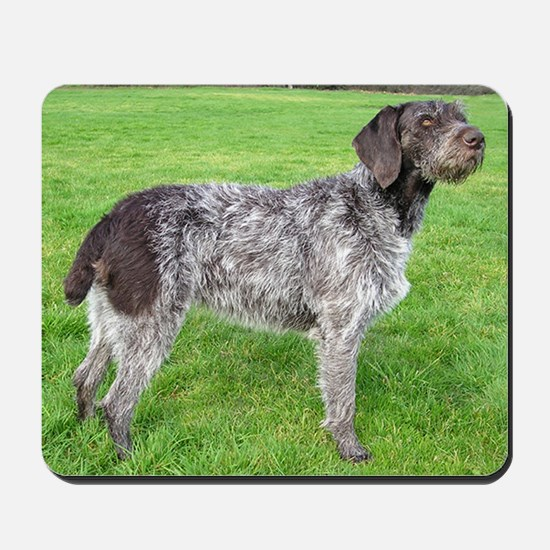 german wirehaired pointer liver full Mousepad