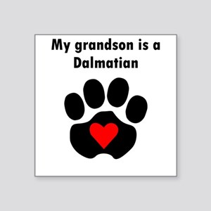 My Grandson Is A Dalmatian Sticker
