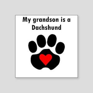 My Grandson Is A Dachshund Sticker