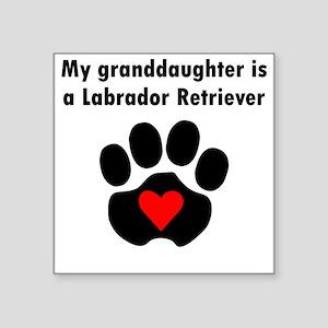 My Granddaughter Is A Labrador Retriever Sticker
