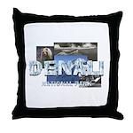 ABH Denali Throw Pillow
