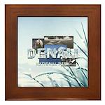 ABH Denali Framed Tile