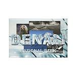 ABH Denali Rectangle Magnet (100 pack)